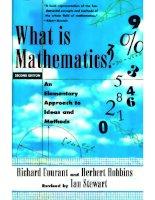 What is mathematics ?