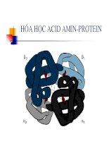 Bài giảng hóa học acid amin protein