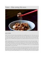 Giới thiệu đậu natto nhật bản