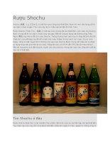Rượu shochu