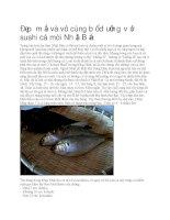 Giới thiệu món sushi cá mòi