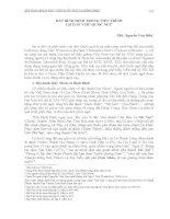 ĐẤT BÌNH ĐỊNH TRONG TIẾN TRÌNH LỊCH SỬ CHỮ QUỐC NGỮ