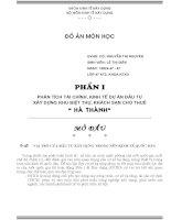 DỰ ÁN ĐẦU TƯ XÂY DỰNG BIỆT THỰ, KHÁCH SẠN CHO THUÊ HÀ THÀNH