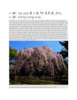 Du lịch nhật bản vườn ngự uyển của nhật bản
