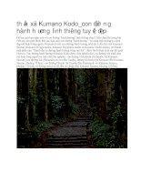 Du lịch nhật bản ngôi đền kumano kodo