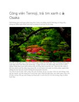 Du lịch nhật bản công viên tennoji
