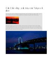 Du lịch nhật bản cầu cầu vồng ở tokyo