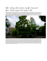 Du lịch nhật bản công viên ueno của hoa anh đào và thú quý hiếm