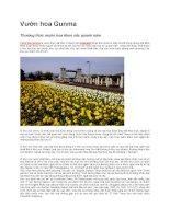 Du lịch nhật bản vườn hoa gunma