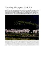 Du lịch nhật bản con sông mukogawa nhật bản