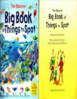 big book of things to spot compressed