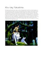 Du lịch nhật bản khu rừng yakushima