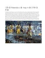 Giới thiệu nhật bản lễ hội hiwarata cầu may mắn ở nhật bản