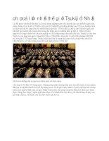 Du lịch nhật bản chợ cá lớn nhất thế giới tsukiji ở nhật