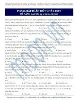ProS40 ESTE thionline BaiToanDotChayESTE (NANGCAO)