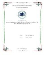 Tiểu luận môn kế toán quốc tế quá trình phát triển và phân tích nội dung của IAS 21