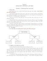 HÌNH THUC TO CHÚC LOP học 16 17