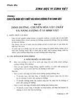 Học tốt sinh học 10 (bản văn 2009) phần 2