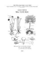 kỹ thuật trồng và bảo quản các loại nấm