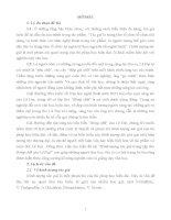 Tóm tắt luận văn thạc sĩ: Hình tượng tác giả trong tập thơ Bóng chữ của Lê Đạt