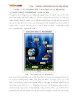 Giải bài tập trang 9 SGK Sinh học lớp 10: Các cấp tổ chức của thế giới sống