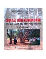 chọn và tạo giống rừng và gây rừng phòng hộ ở việt nam