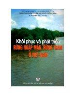 Khôi phục và phát triển rừng ngập mặn ở Việt Nam