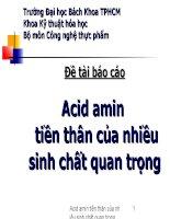 Đề tài acid amin tiền thân của nhiều sinh chất quan trọng