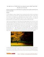 Văn mẫu lớp 8: Suy nghĩ của em về hình ảnh hai cây phong trong tác phẩm Người thầy đầu tiên của Ai-ma-tốp