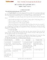 Đề cương ôn tập học kỳ 1 môn ngữ văn 6 trường THCS nguyễn văn tư