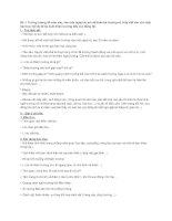 Hướng dẫn viết bài tập làm văn số 2 – văn tự sự