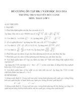 Đề cương ôn tập môn toán lớp 9 (13)