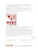 Giải bài tập trang 10SGK Sinh lớp 9: Lai một cặp tính trạng