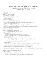 Đề cương ôn tập môn toán lớp 7  (5)
