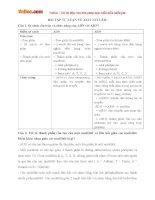 Bài tập Sinh học lớp 10: Axit nuclêic