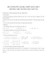 Đề cương ôn tập môn toán lớp 9 (41)