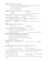 Đề kiểm tra môn tin học 8 15p (lan 1 HKI)