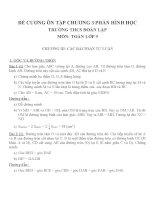 Đề cương ôn tập môn toán lớp 9 (10)