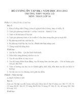 Đề cương ôn tập môn toán lớp 10 (21)