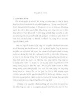 Đề cương Vấn đề nữ quyền trong tiểu thuyết của Nguyễn Xuân Khánh
