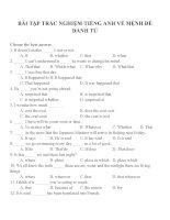 Bài tập trắc nghiệm môn tiếng anh 12 (73)