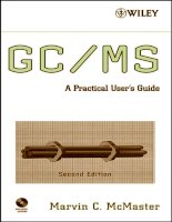 GC MS  a practical user  039 s guide  second edition