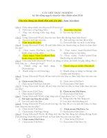 Đề thi và đáp án trắc nghiệm Tin học thi công chức, chuyên viên chính ( Gồm Word, Windows, mạng, Excel)