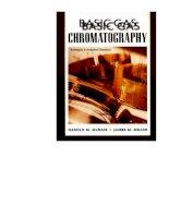 basic gas chromatography