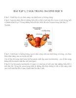 Bài tập SGK môn sinh học lớp 8 (45)