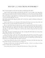 Lý thuyết và bài tập môn sinh học lớp 9 (28)