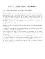 Bài tập SGK môn sinh học lớp 6 (5)