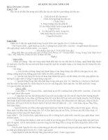 Tài liệu bồi dưỡng môn ngữ văn lớp 9 tham khảo (8)