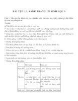 Bài tập SGK môn sinh học lớp 6 (23)