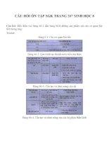 Bài tập SGK môn sinh học lớp 8 (42)
